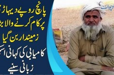 Motivating Story Of A Farmer & His Tips On Growing Successful Crops