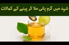 The Use And Benefits Of Honey With Partially Hot Water. Details In The Video