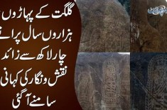 Ancient Rock Carvings In Diamer Under Threat | How To Protect Pakistan's Historical Sites?