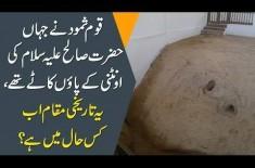 True Islamic Story Of Prophet Saleh (A.S) & His Camel | How Did Allah Punish Qaum-E-Samood?