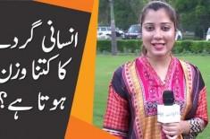 Parsa Qamar   Insani Gurday Ka Kitna Wazan Hota Hai?   General Knowledge Question