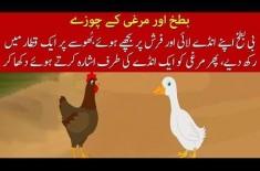 Kids Urdu Story: Batakh Aur Murghi Ke Chuzay