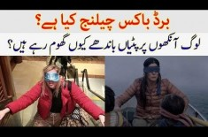 What is Birdbox Challenge? Why People Keep on Blindfolds? Details in the Video