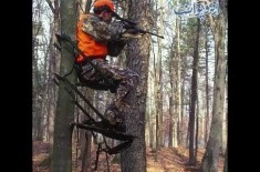 US Hunter Pays Thousands of Dollars for Hunt of Single Animal, Find Out Details