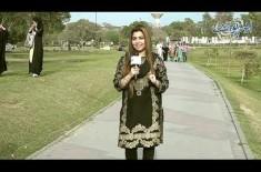 Ek Taraf Hai 100 Crore aur Dusri Taraf Hai Pasan Ki Shadi, Ap Kisay Choose Karay Ge? Funny Question