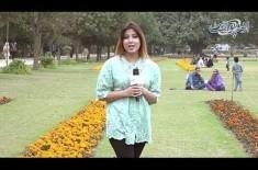 Jab Insan Ne Chand Per Pehla Qadam Rakha tou Us Din Kya Tareekh Thi? General Knowledge Question