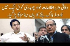 Fawad Ch Got In Trouble After His Statement About PMLQ