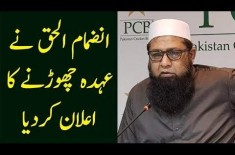 Inzamam-Ul-Haq Resigned As PCB's Chief Selector After ICC WC 2019 Failure