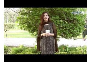 1 Sabz Ghar Hai,Uske Andar Safaid Ghar,Uske Andar Surkh Ghar,Uske Andar Kalay Bachay Khel Rahay Hain