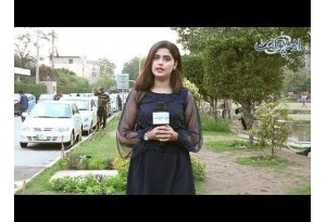 Ek Hi Saans Main 50 Se 100 Tak Urdu Main Ginti Kaun Sunaye Ga? Watch Funny Video