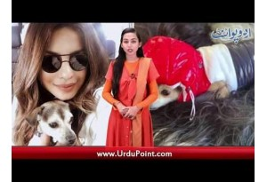 JPNA 3 Is In Process, Priyanka Bought Expensive Jacket For Her Dog, Find Out More