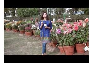 Blue Pen Se Black Kis Tarah Likha Ja Sakta Hai? Funny Common Sense Question
