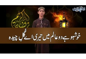 Khushboo Hai Do Aalam Mein Teri Aye Gul-e-Chedah