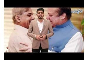 Cracks In PMLN Camp, Find Out Details