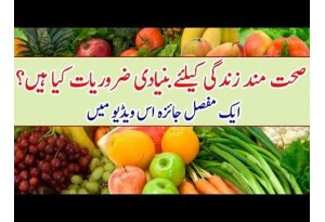 What Are The Basic Things For A Healthy Life? A Brief Analysis In This Video
