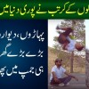 Hollywood Inspired Hazara Teens Will Leave You Speechless With Parkour Stunts - Pakistani Talent