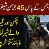 This Pakistani Owns 45 German Shepherd - How Much He Spends Daily On Their Food?