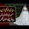 An American Bride Sets An Entrance Fee At Her Wedding | Watch Interesting Story