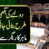 Dulhay Ki Baghi Kis Tarhan Banai Jati Hai