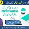 Rozgar Online Tanveer Nandla K Sath Episode 4