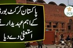 Pakistan Cricket Board K Ehem Official Ne Istifa De Diya