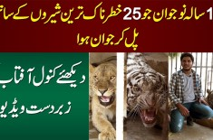 Kanwal Aftab Goes Inside A Tiger's Cage Of A Private Mini Zoo In Lahore