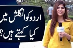 Urdu Ko English Main Kya Kehte Hain