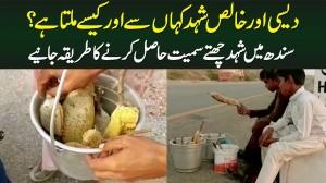 Desi Or Khalis Shehad Kahan Se Or Kese Milta Hai? Shehad Chatte Samait Hasil Karne Ka Tariqa Janiye