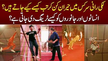 Lucky Irani Circus - Kaise Operate Hoti Hai? Training Kaise Hoti Hai? Janiye