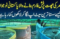 Ghar Ki Chat Per Fish Farm Banane Wala Pakistani - Sasta Setup Laga Kar Kese Lakhon Kamata Hai?