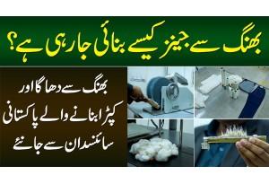 Bhang Se Jeans Kese Banayi Ja Rahi Hai? Bhang Se Dhaga Aur Kapra Banane Wala Pakistani Scientist