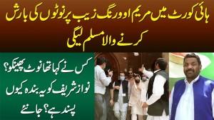 Maryam Aurangzeb Per Pese Lutanay Wala PMLN Worker - Nawaz Sharif Ko Ye Worker Kiun Pasand Hai?