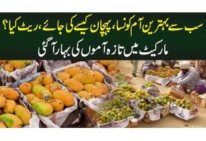 Behtareen Aam Konsa Hai? Pehchan Kese Hoti Hai? Rate Kya Hai? - Market Me Taza Aam Ki Bahar Aa Gayi