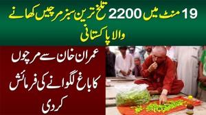 19 Min Me 2200 Or 1 Second Me 50 Tekhi Sabz Mirch Khane Wala Pakistani - Mircha Wali Sarkar