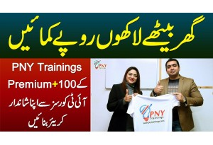 Make Millions At Home - Learn 100 Plus IT Courses Of PNY Trainings And Make A Successful Career