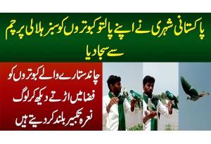 Shehri Ne Aapne Kabootaro Ko Pakistani Flag Se Saja Dia - Dekhiye Chand Sitaray Wale Kabootar