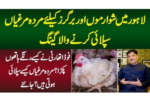 Lahore Me Shawarma Aur Burger Ke Liye Dead Chicken Supply Karne Wala Gang Pakra Gaya