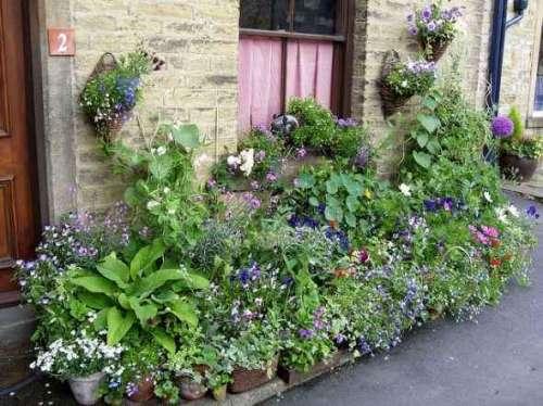 گھریلو باغبانی
