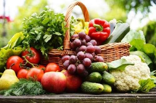 سبزیوں کی حفاظت